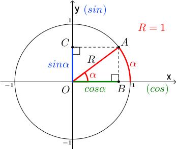 Синус и косинус на тригонометрическом круге