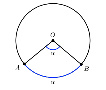 Окружность: центральный угол